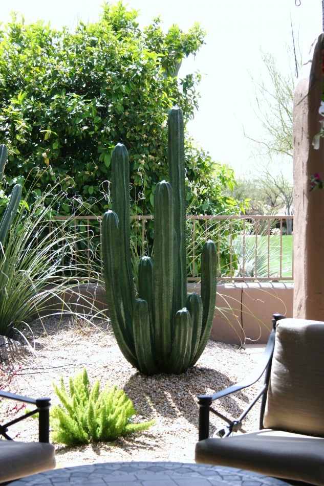 Fountains in phoenix arizona stone cactus water sculpture for Garden fountains phoenix